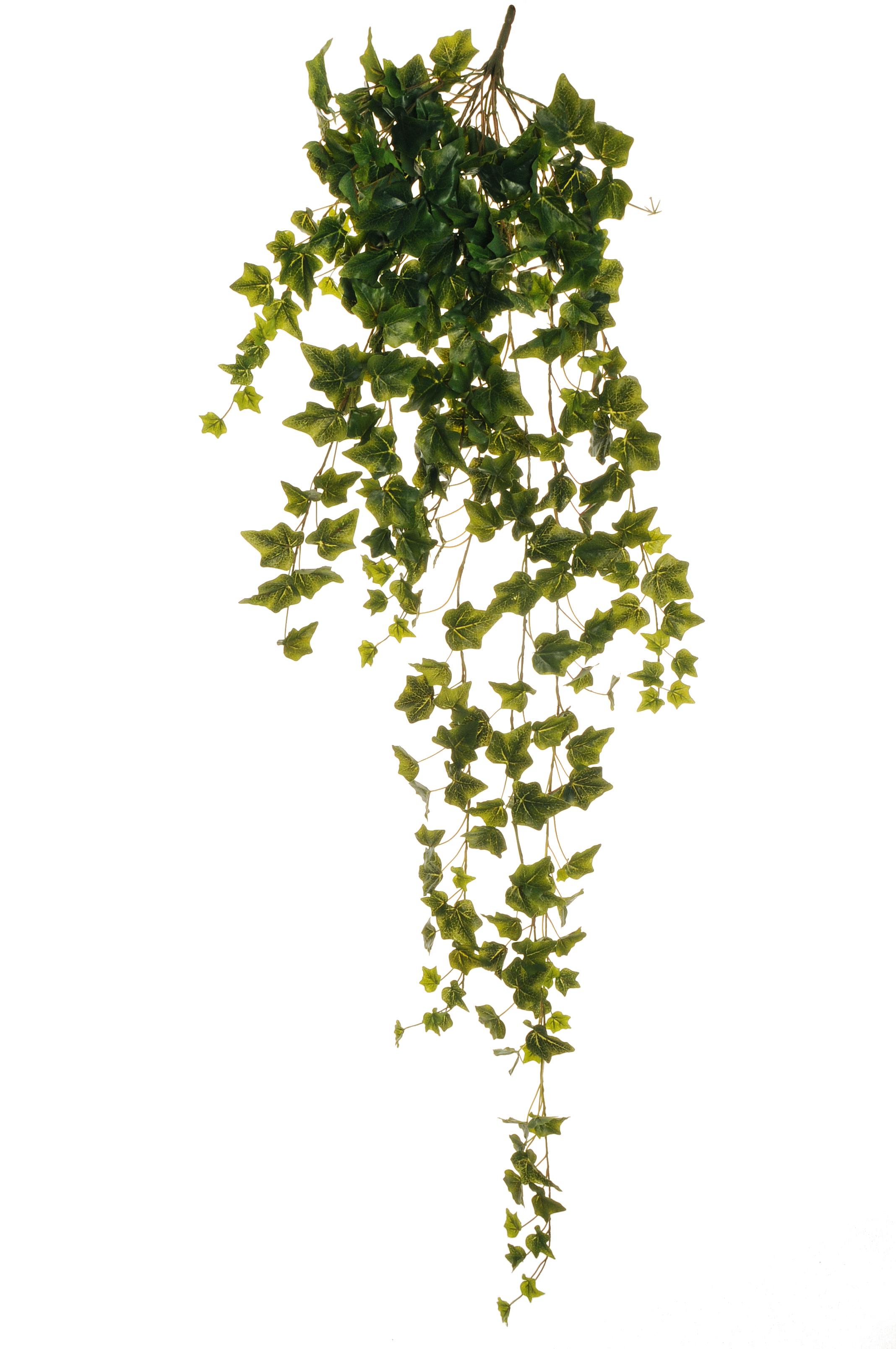 Edera cadente verde for Piante rampicanti finte